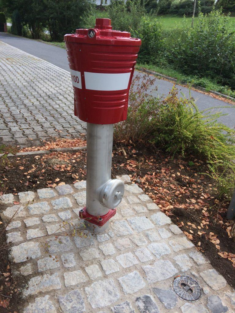 Hydrant auf Steinpflaster; Buschwerk dahinter